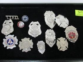 COLLECTION OF FLORIDA FIRE BADGES