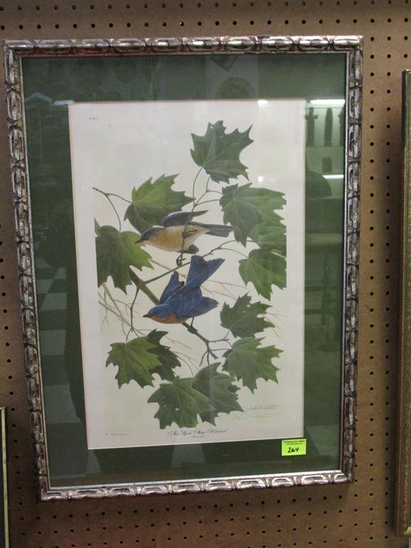 JOHN RUTHVEN PLATE VI LITHO, DBL. SIGNED AND NUMBERED