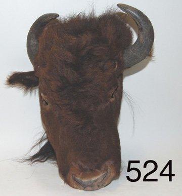 524: HEADDRESS