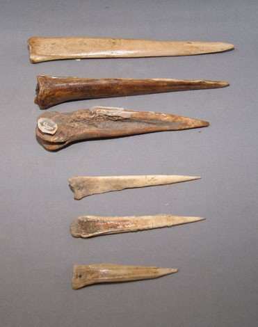 24: COLLECTION OF BONE AWLS