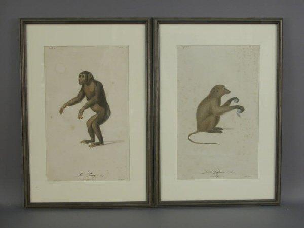 168: Set of five Andrebert handcolored engravings of