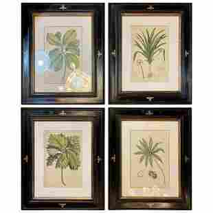 Group of Four Original Hand Colored Engravings