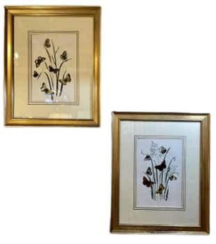 Pair of Botanicals in Gilt Frames