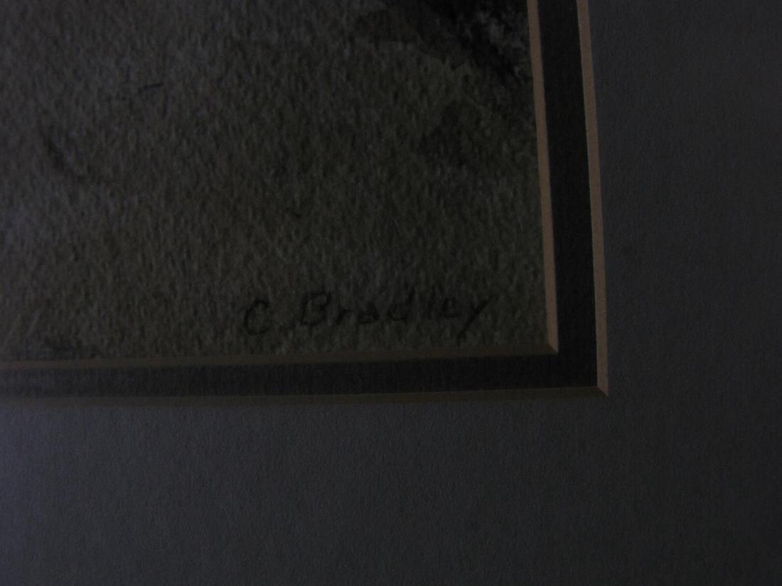 Carolyn Bradley 20x17 WC Mexico Village - 3