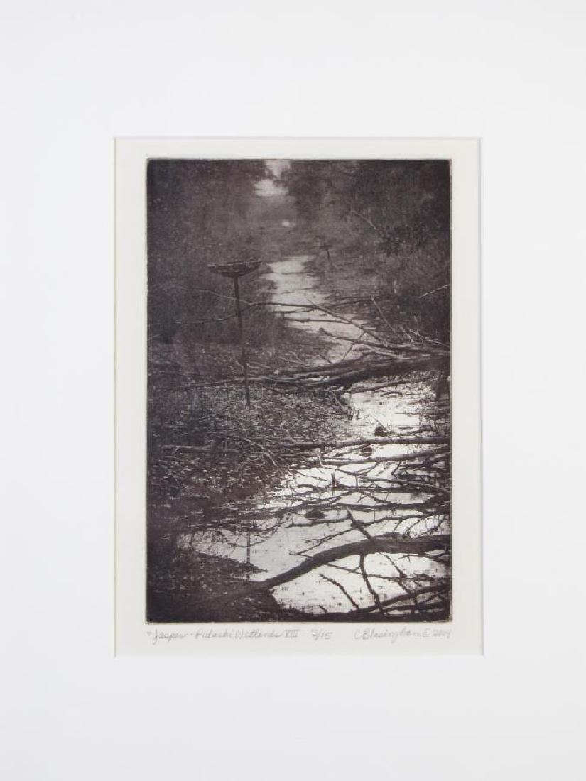 Cynthia Blasingham Intaglio Print, Juried