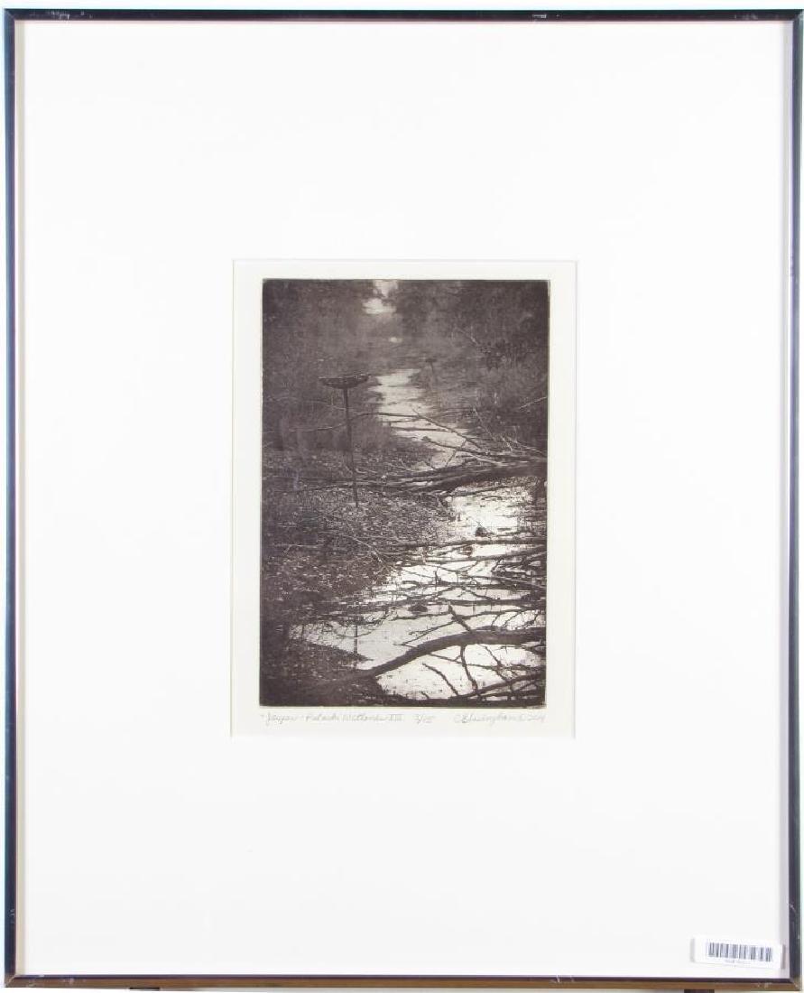 Cynthia Blasingham Intaglio Print, Juried - 2
