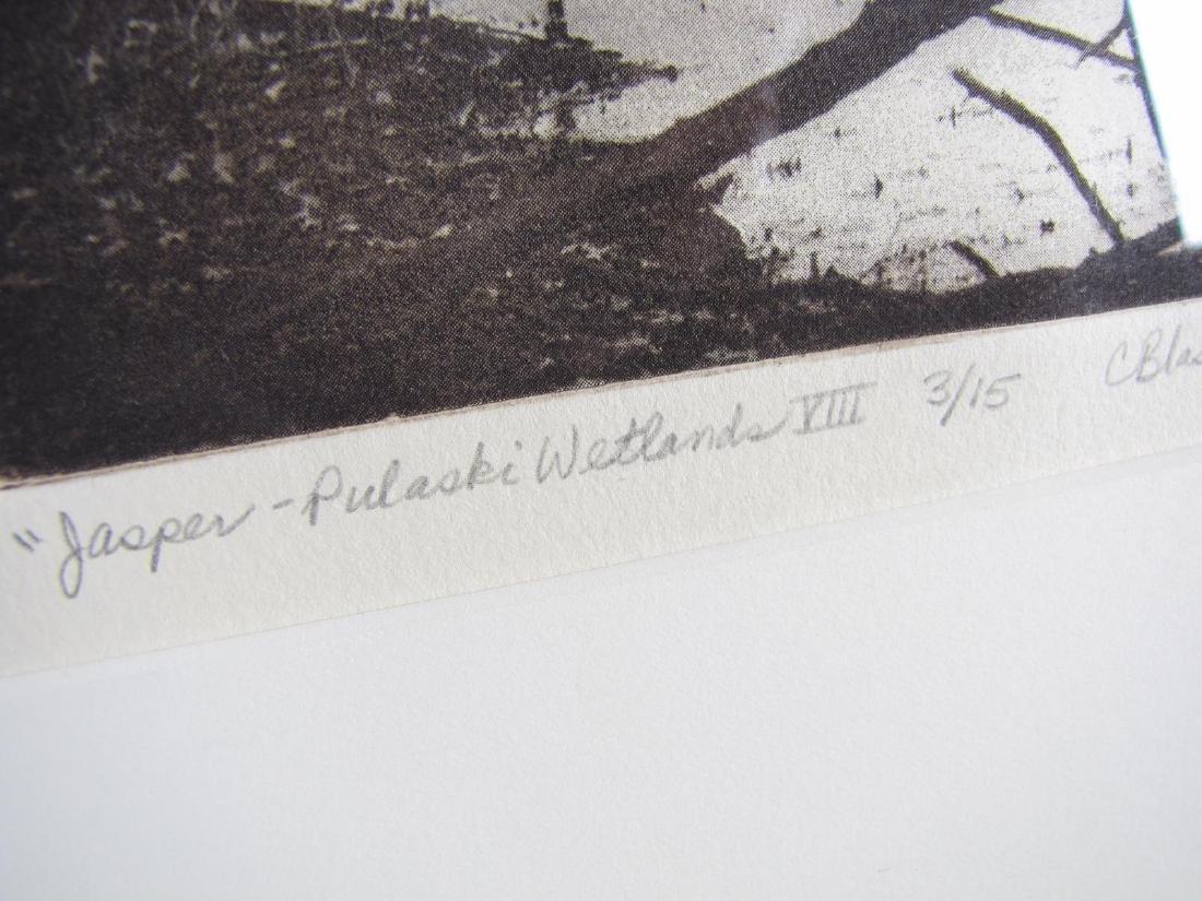 Cynthia Blasingham Intaglio Print, Juried - 6