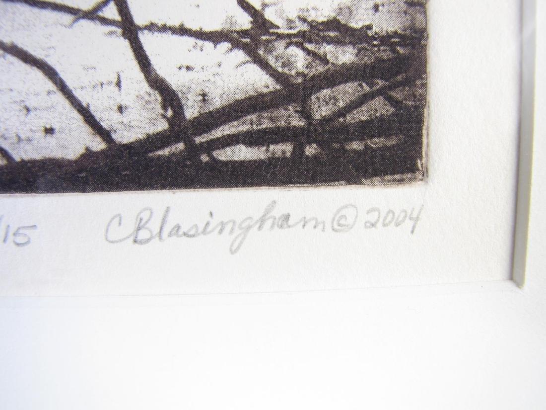 Cynthia Blasingham Intaglio Print, Juried - 8