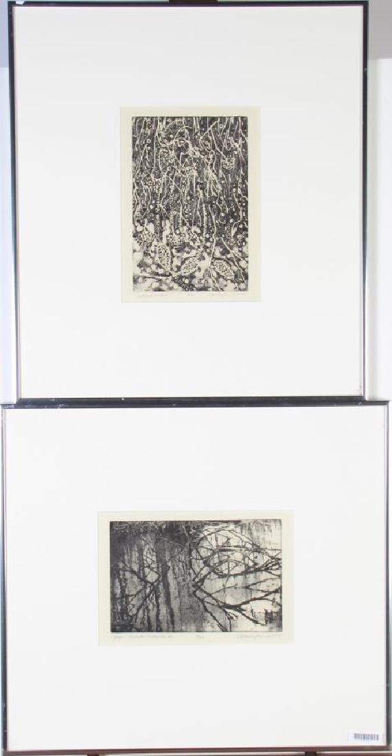 Two Framed Intaglio Prints by Cynthia Blasingham