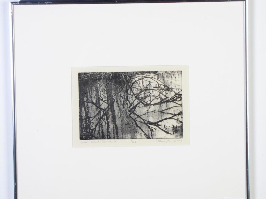 Two Framed Intaglio Prints by Cynthia Blasingham - 3