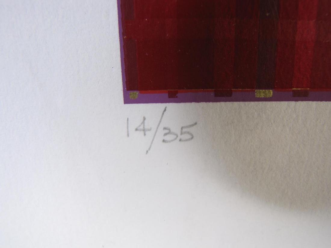 Framed Op-Art Silkscreen, A Goldberg - 8