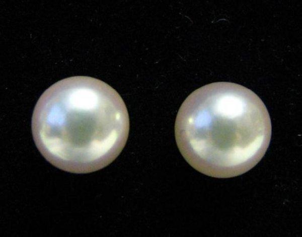 653: Pair of Mikimoto Pearl Studs, 18K