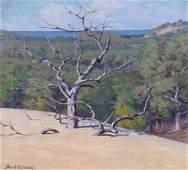 462: Frank V. Dudley 20x22 O/C Tree in Dunes