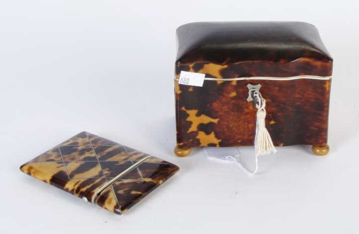 Two Tortoise Shell Decorative Accessories