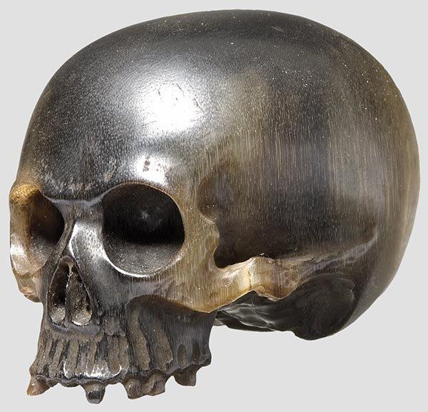 2022: A rhin oceros horn skull