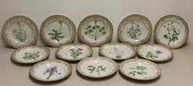 12 Royal Copenhagen Flora Danica Plates