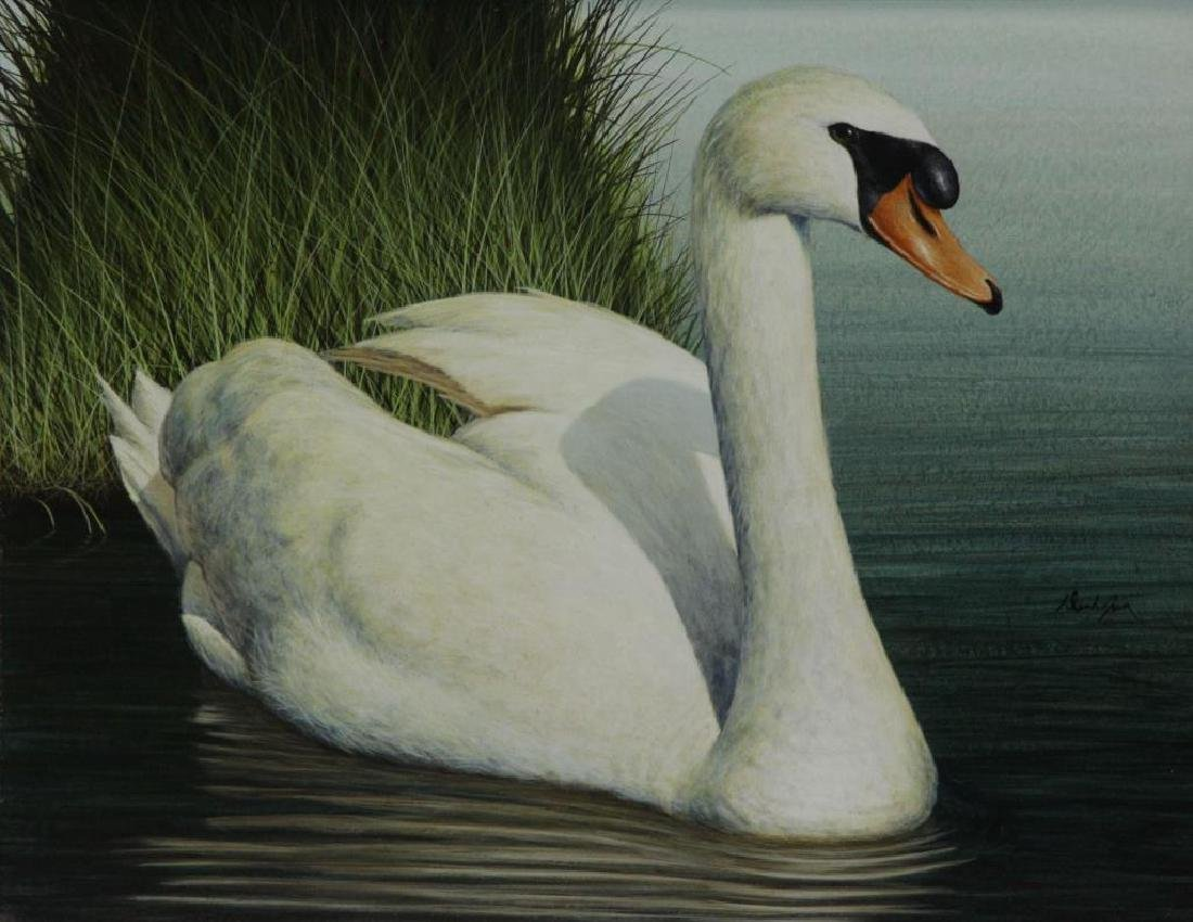 "JONES, David. Acrylic on Board. ""Mute Swan""."