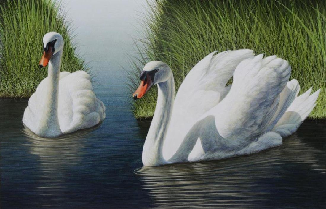 JONES, David. Acrylic on Board. Swans in the Marsh