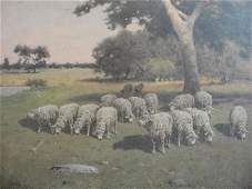 71 PHELAN Charles T OB Herd of Sheep in Pastoral