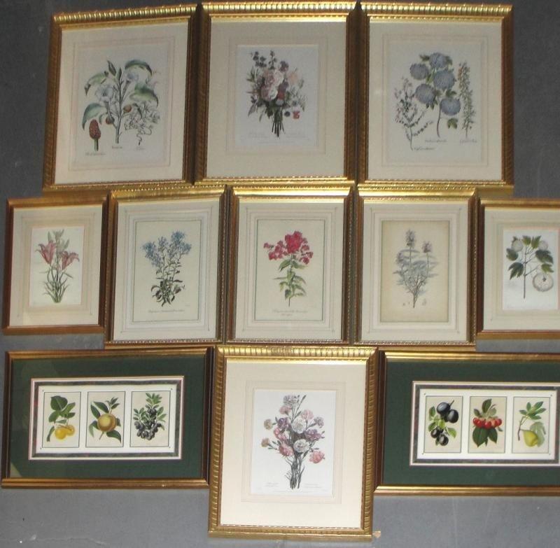 3: 11 Framed Decorative Floral Prints.