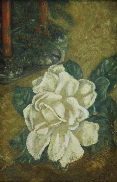 HYDE, Helen. Oil on Board. White Rose.