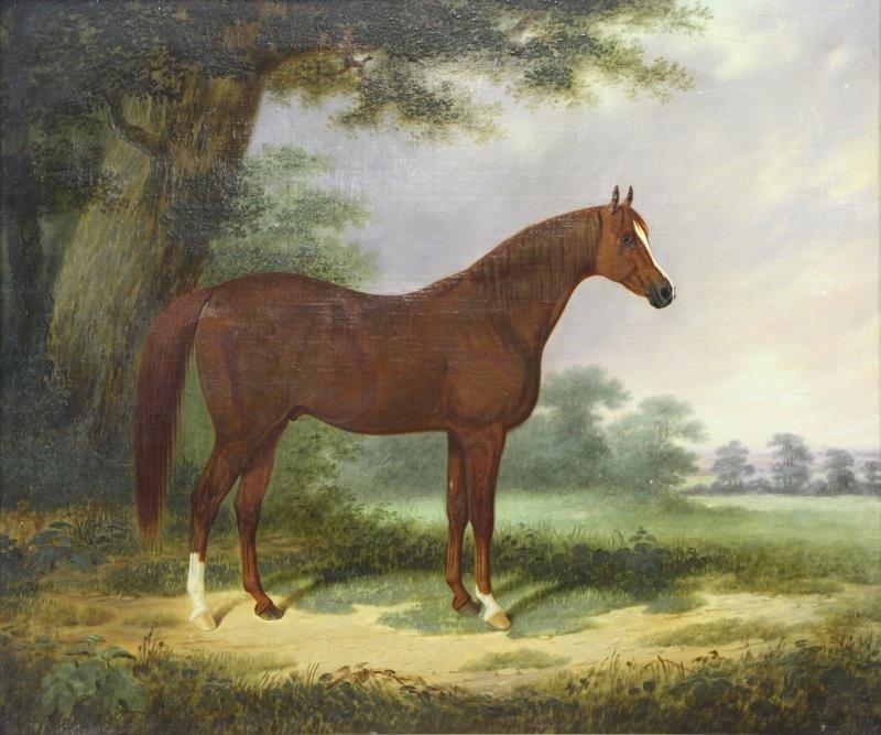 19th C. Oil on Canvas. Portrait of an Arabian