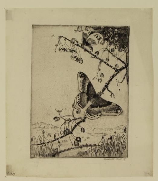 "RHETT, Antoinette, Etching ""Butterflies"" - 3"