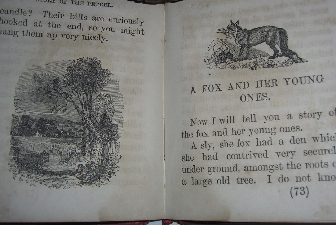 1857 The Indian Chief & the Little White Boy book - 6