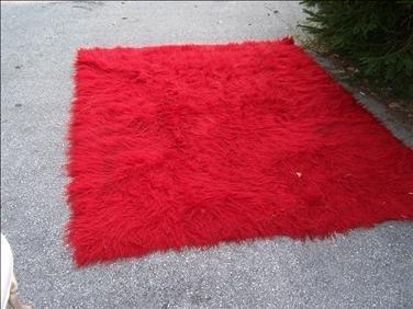 1: Red shag rug, 6' x 8 '