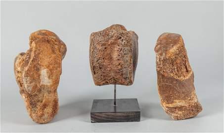 Set Fossil Mammoth sculpture