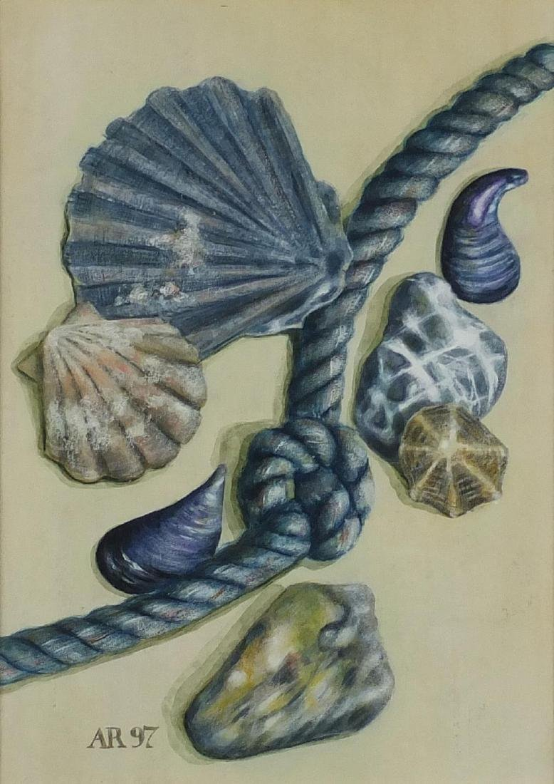 Alison Rankin - Seashells, acrylic on paper, mounted and framed, 35cm x 25cm Further condition