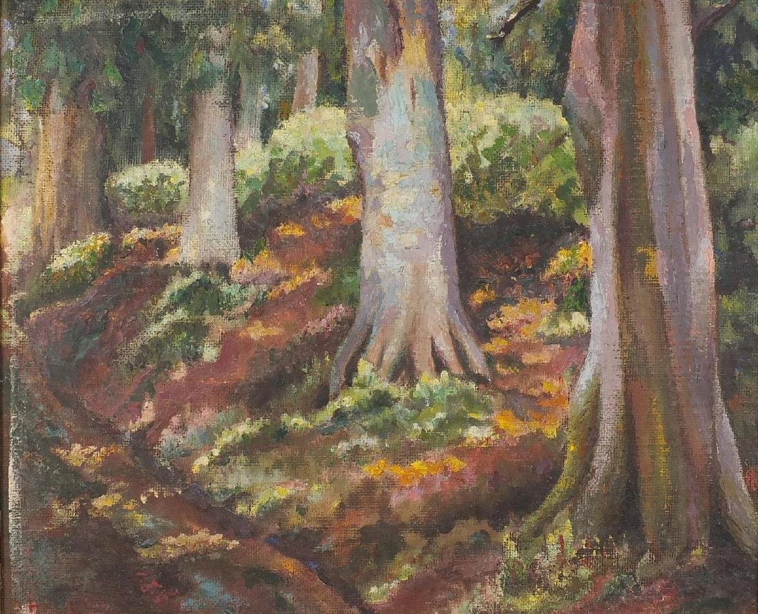 Derek Hill - Hampstead Common woodlands, oil onto board, label verso, framed, 45cm x 35cm Further