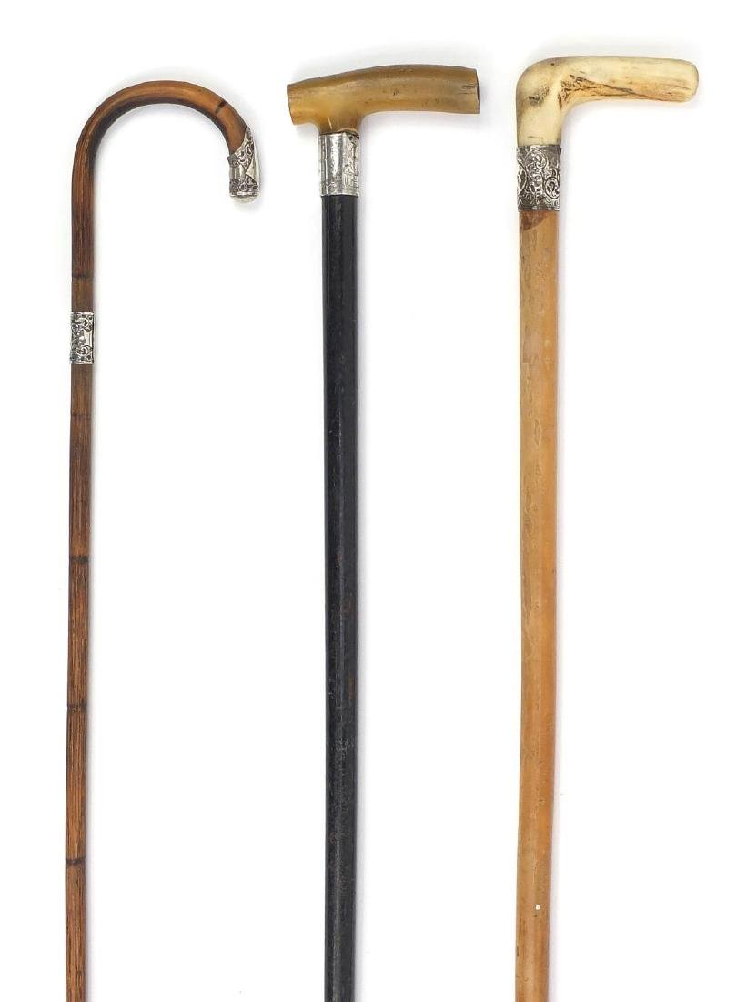 Three wooden walking sticks with silver mounts, including one Malacca and one with horn handle,