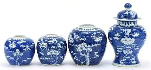 Chinese blue and white porcelain hand painted with