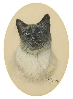 Betty Wells - Portrait of a cat, pastel, mounted,