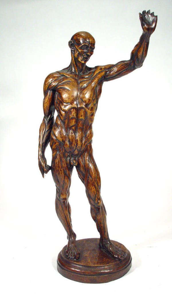 586: Large carved fruitwood figure displaying the muscl