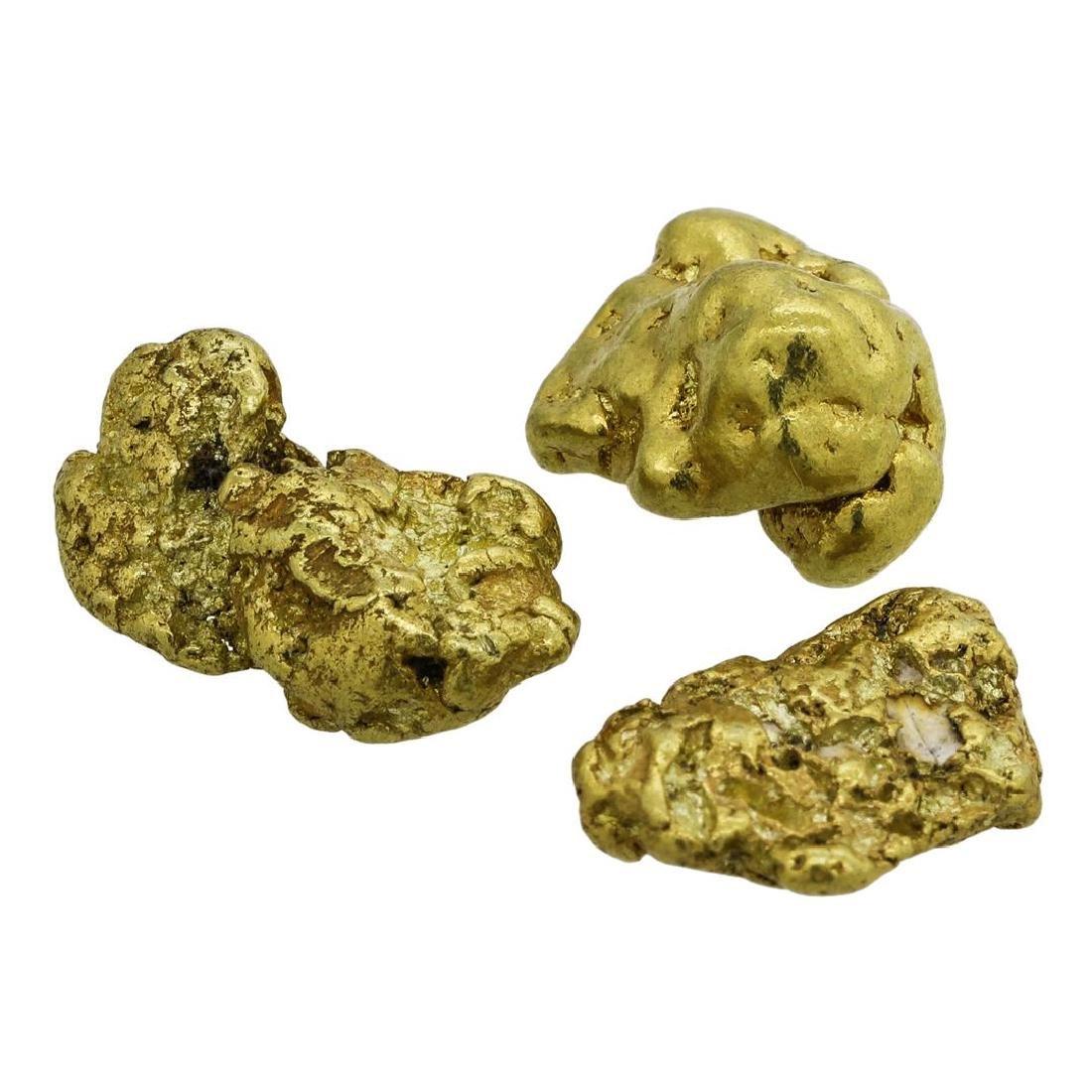 Lot of (2) Alaskan Gold Nuggets 13.14 Grams - 2
