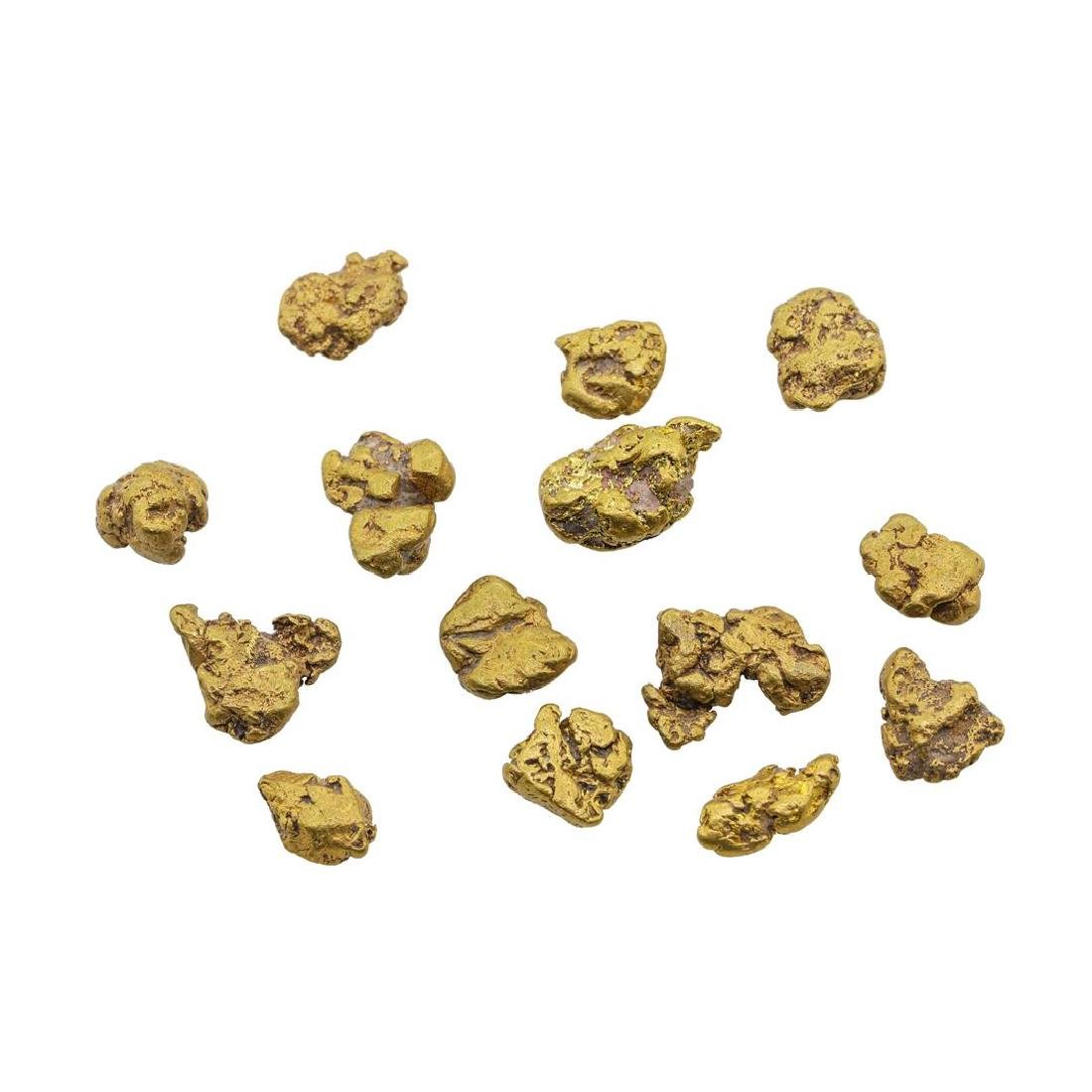 Lot of Gold Nuggets 5.7 grams Total Weight - 2