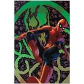 "Marvel Comics ""Amazing Spider-Man #524"" Limited Edition"