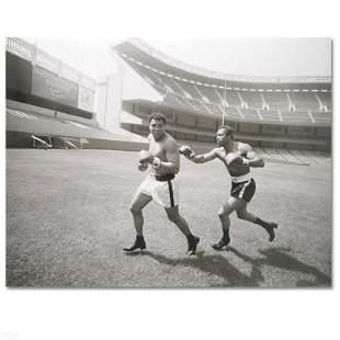 """Norton Chasing Ali"" Photograph"