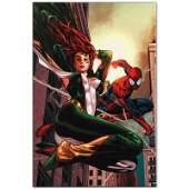 "Marvel Comics ""Amazing Spider-Man Family #6"" Limited"