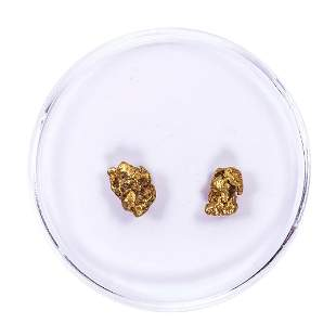 Lot of Gold Nuggets 1.64 Grams Total Weight