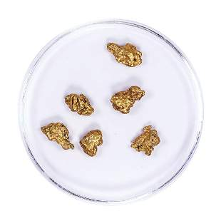 Lot of Gold Nuggets 2.66 grams Total Weight