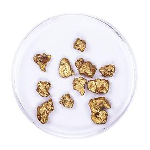 Lot of Gold Nuggets 5.95 grams Total Weight