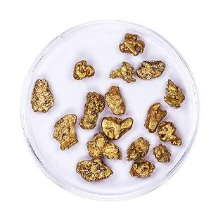 Lot of Gold Nuggets 7.51 grams Total Weight