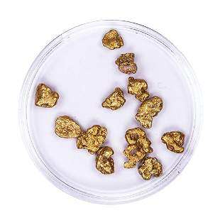 Lot of Gold Nuggets 5.61 grams Total Weight