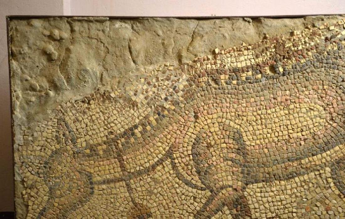 ROMAN MOSAIC FROM ANTIOCH. 1st - 5th C. AD. Roman - 4