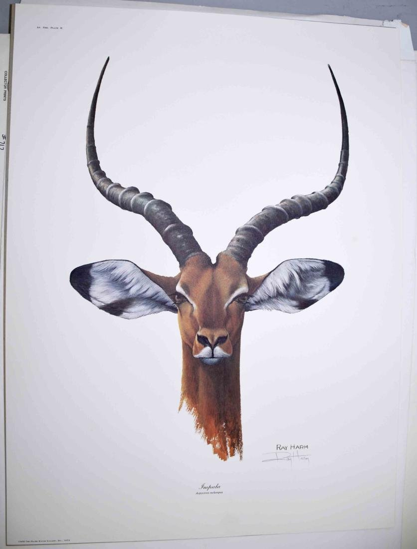 RAY HARM, LITHOGRAPH COLLECTION, each pencil signed and