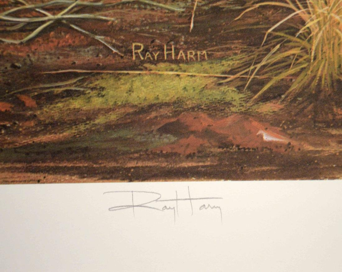 RAY HARM, LITHOGRAPH COLLECTION, each pencil signed and - 8