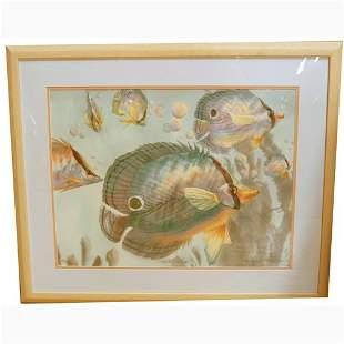 WILLIAMS, R. TROPICAL FISH III. N/R. Li